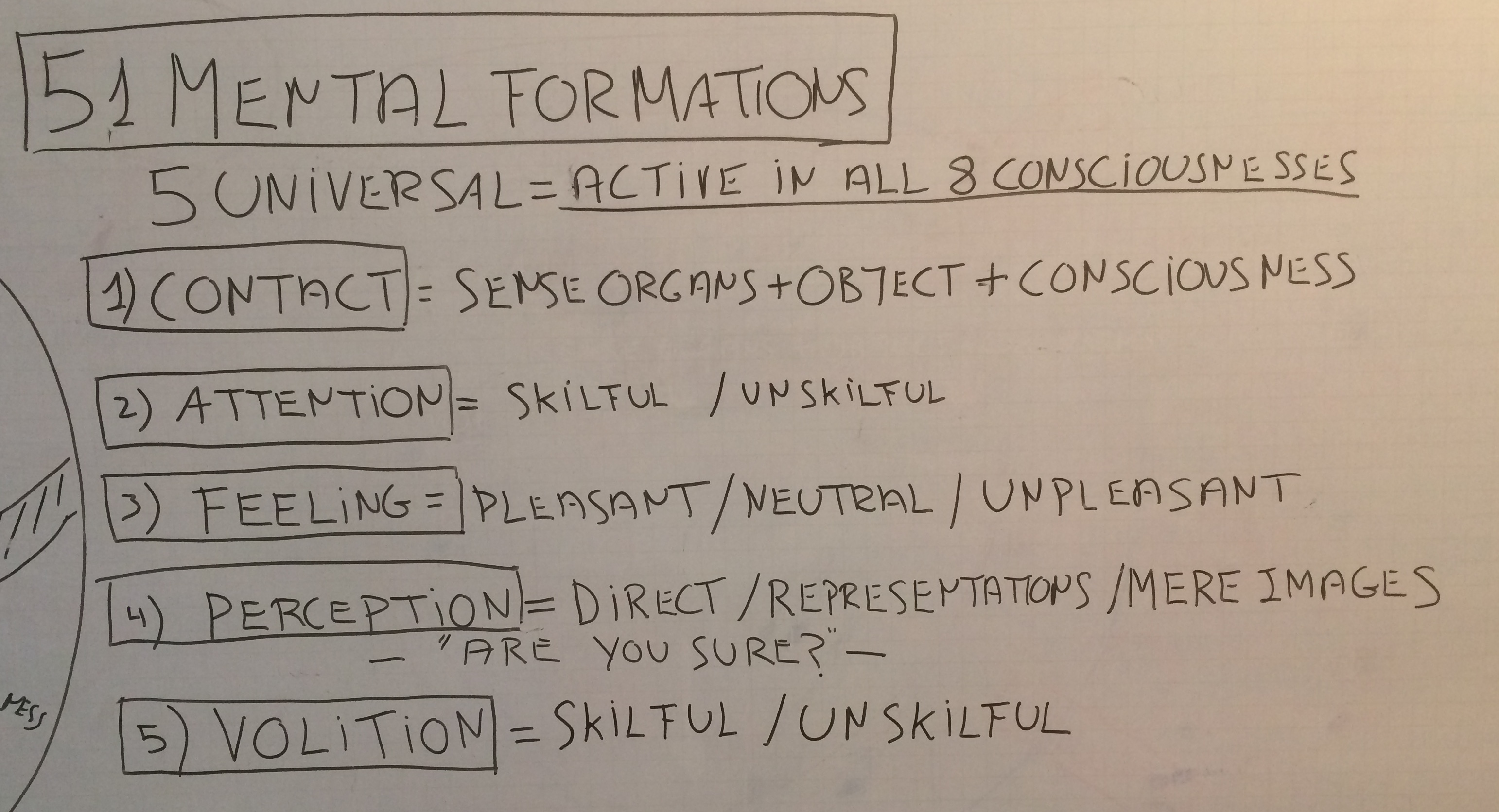 5 universal mental formations