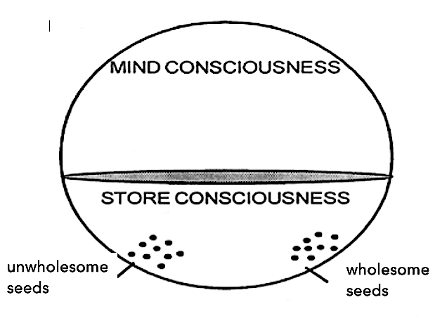 Seeds in our consciousness